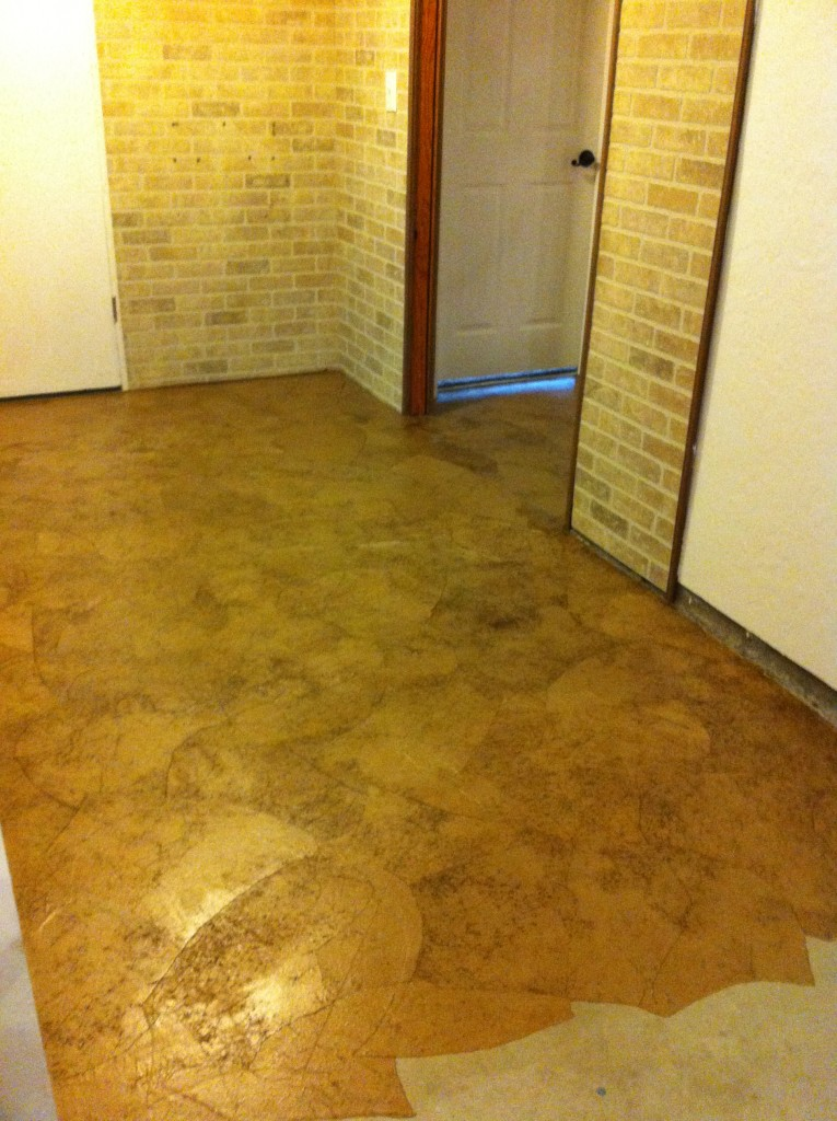 This is the floor after it's dried on the cement in the basement and before polyurethane.