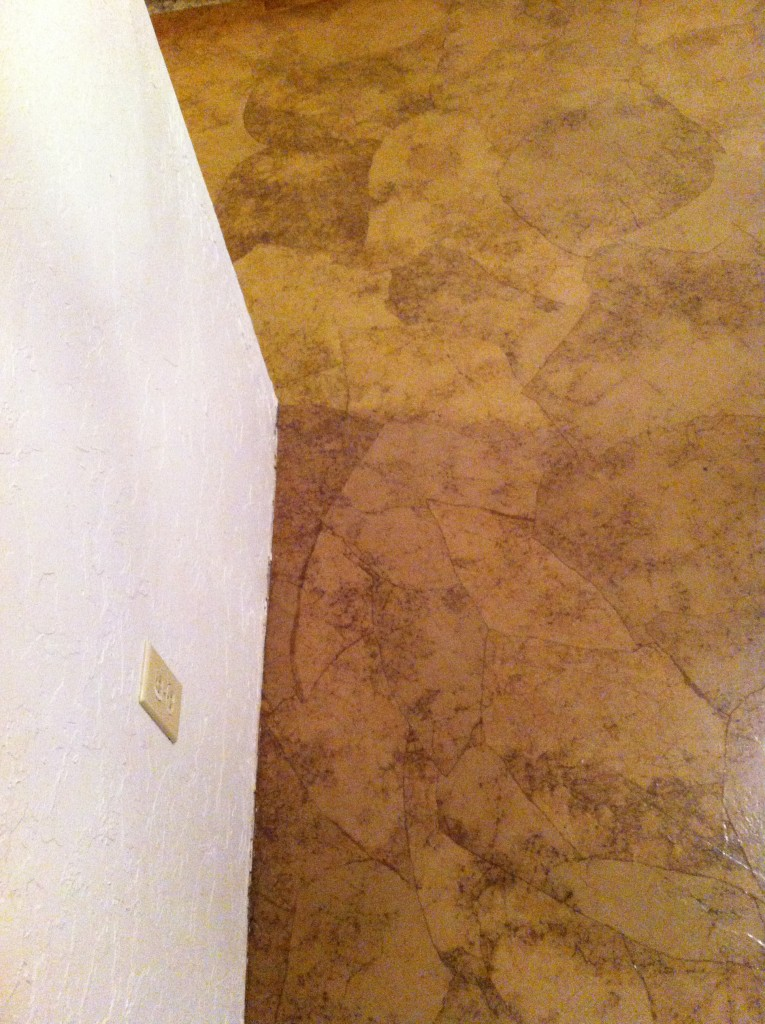 A close up of the basement floor - no stain.