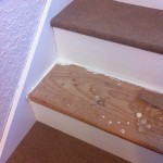 Skipping every other step makes the stairs useable during the process - be sure to paint first!